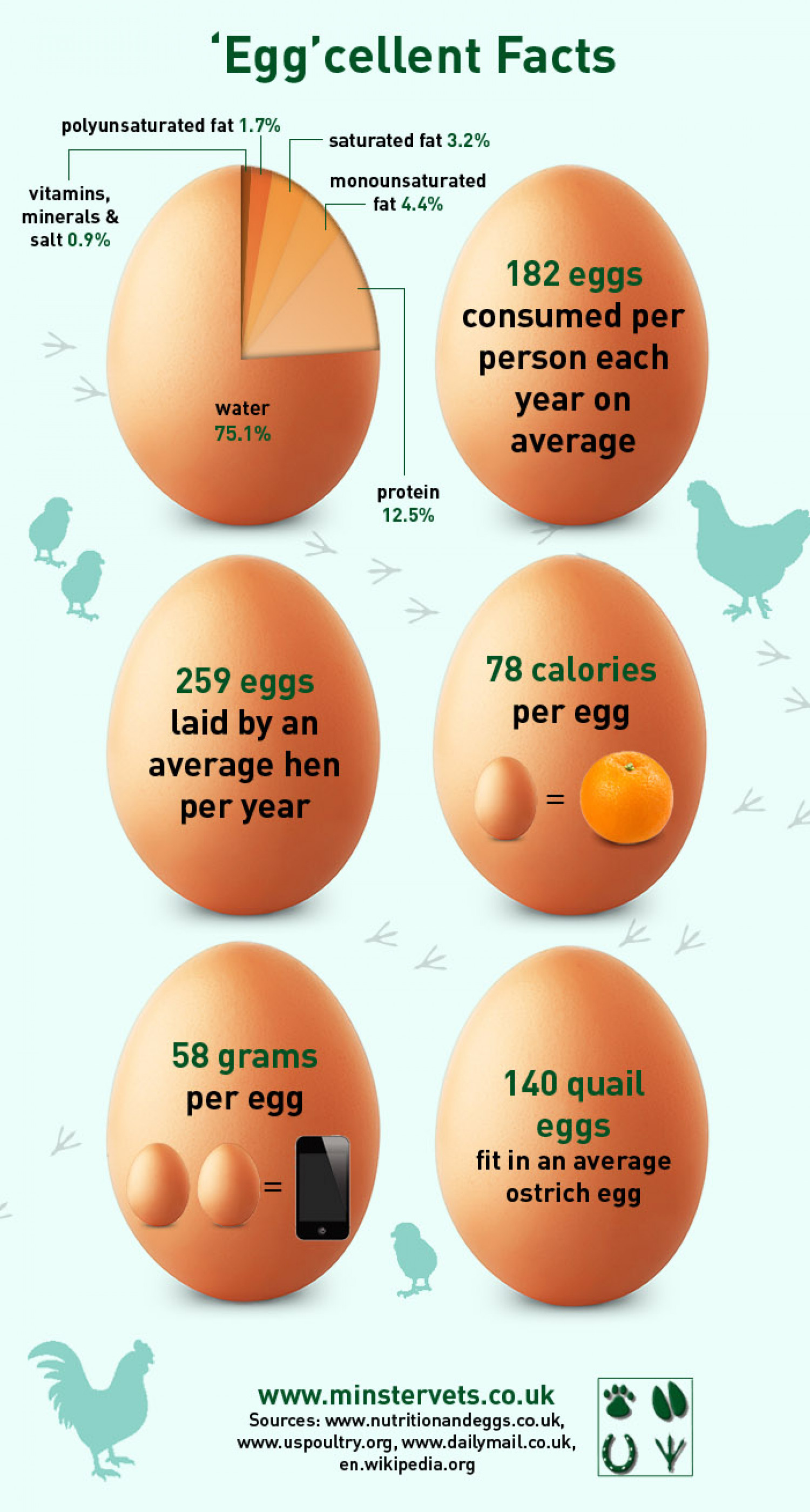 'Egg'cellent Facts Infographic