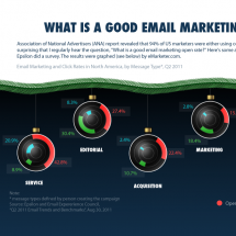 Email Marketing Best Practices Infographic