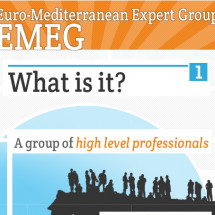 EMEG - Euro-Mediterranean Expert Group Infographic