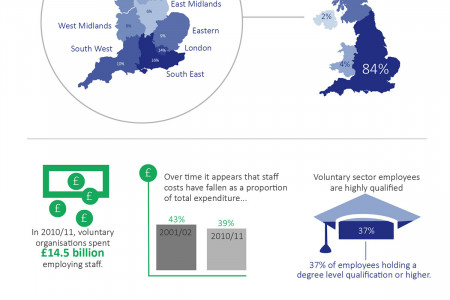 Employment in the Voluntary Sector Infographic