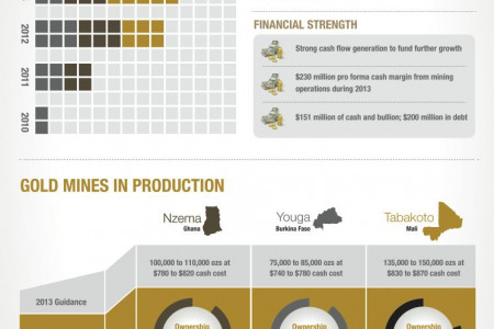 Endeavour Mining Goldmines Factsheet 2013 Infographic