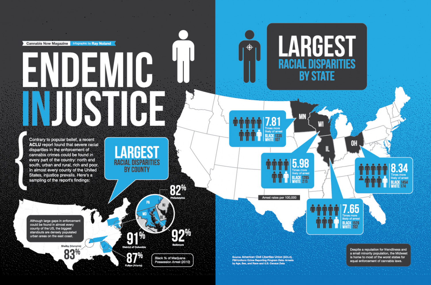 Endemic Injustice Infographic