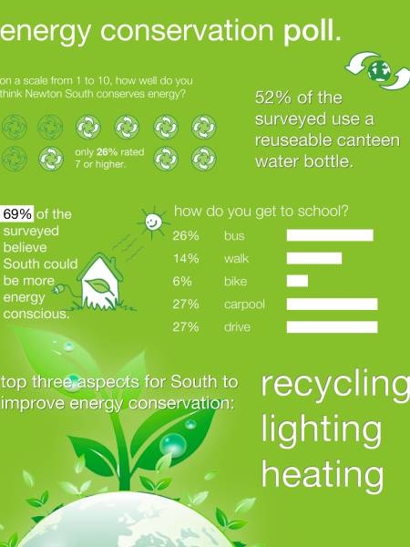 Energy Conservation Poll Infographic
