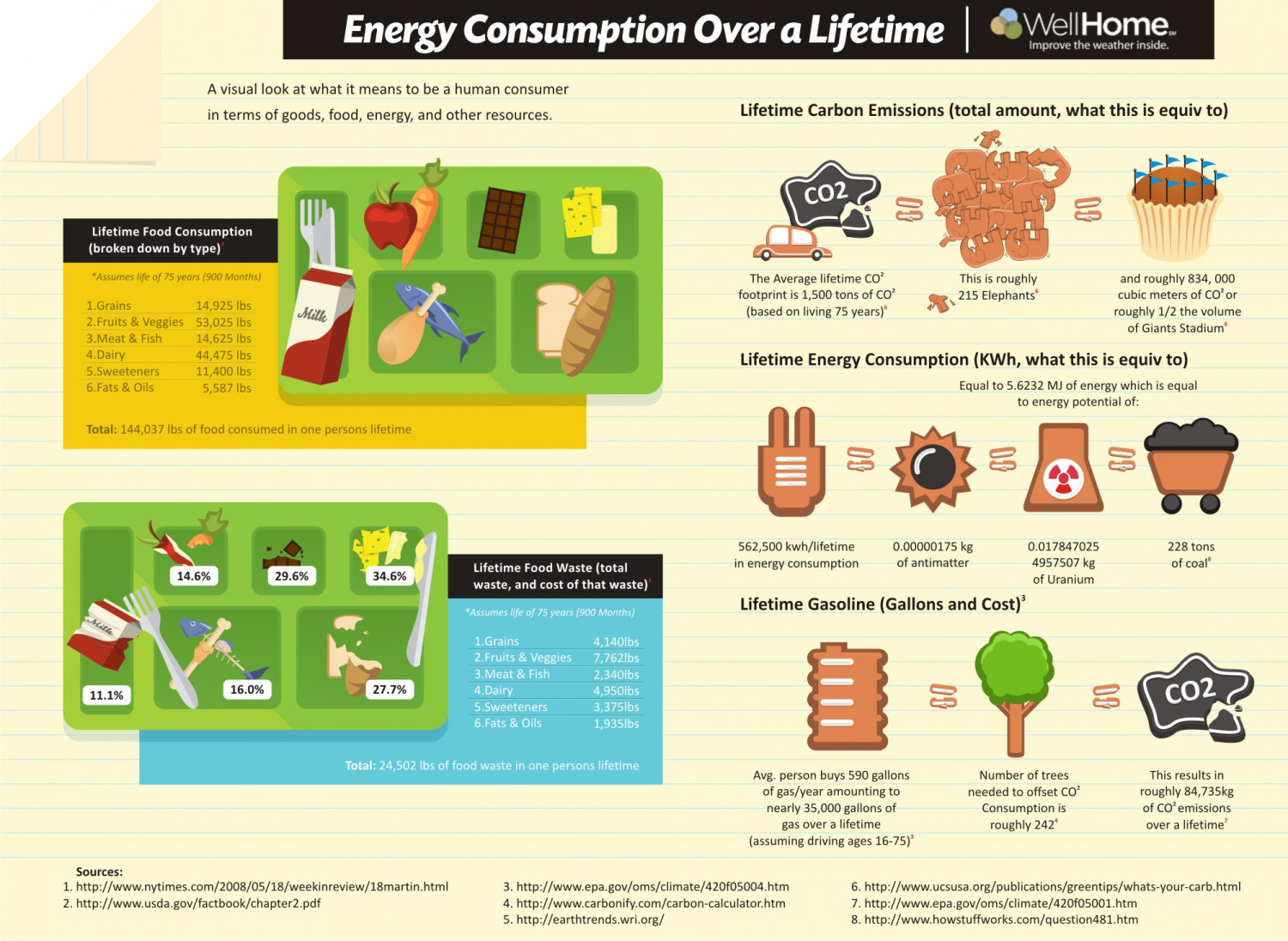 Energy Consumption Over a Lifetime Infographic