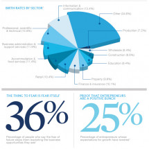 Entrepreneurs in numbers Infographic