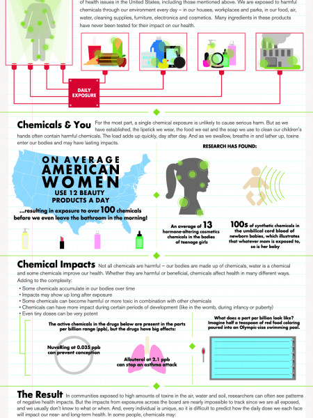 Environmental Health 101 Infographic