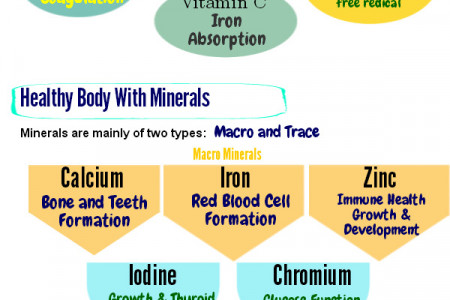 Essential Vitamins and Minerals for Healthy Body Infographic