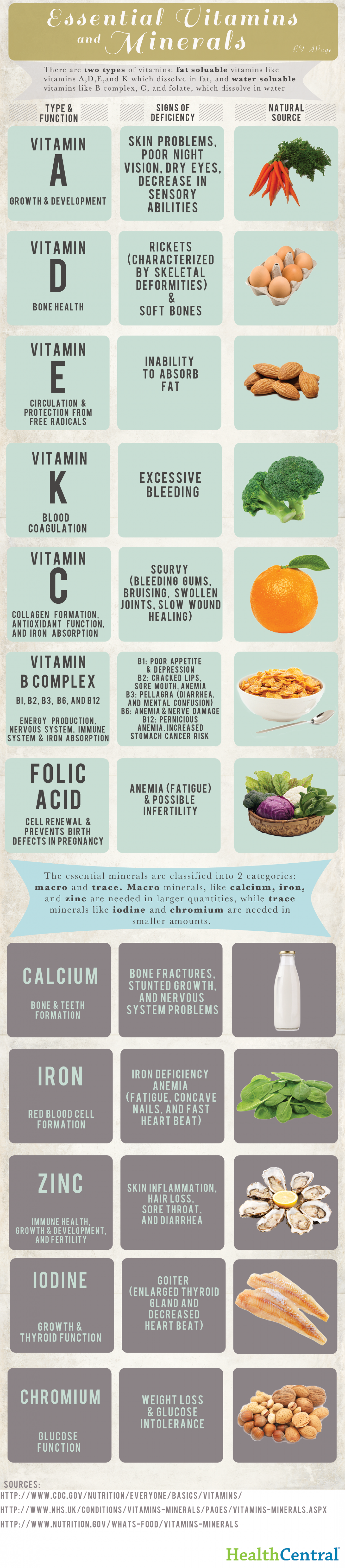 Essential Vitamins and Minerals Infographic