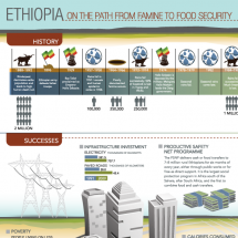 Ethiopia: On the Path from Famine to Food Security Infographic
