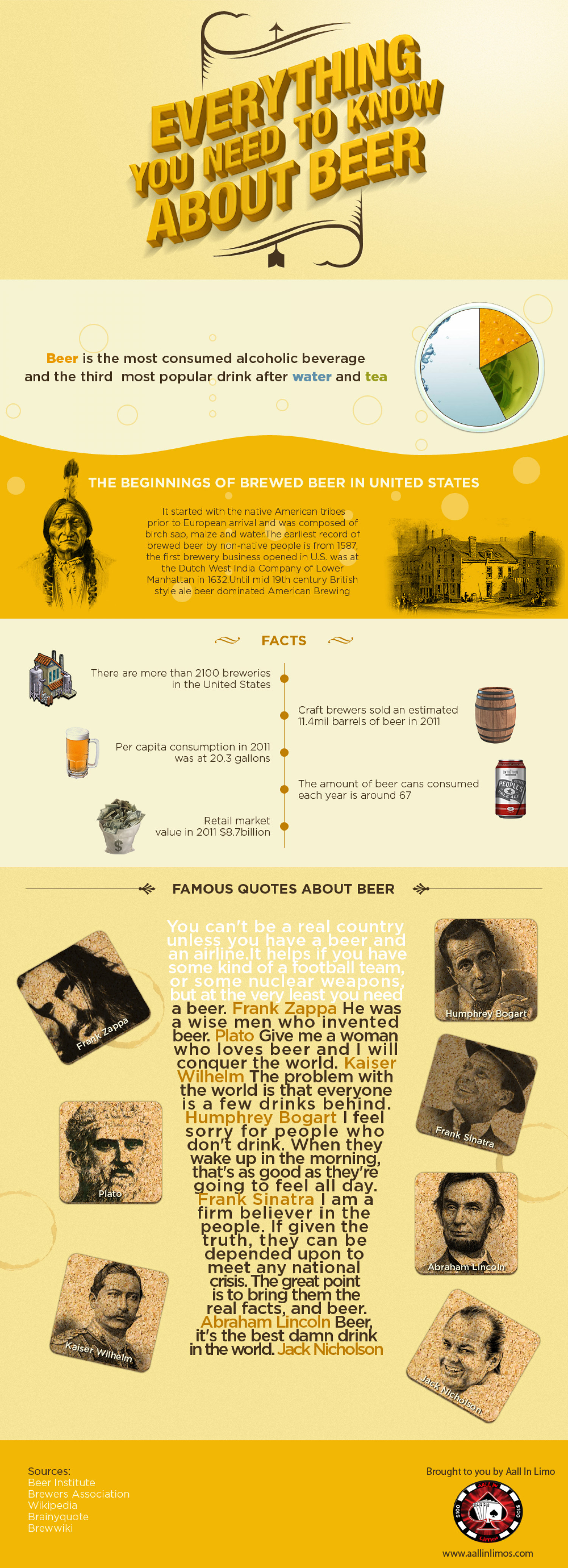 Everything you need to know about beer Infographic