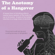 Everything You Need to Know About Hangovers Infographic
