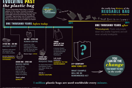 Evolving Past the Plastic Bag Infographic