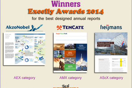 Excelly Awards 2014 winners Infographic