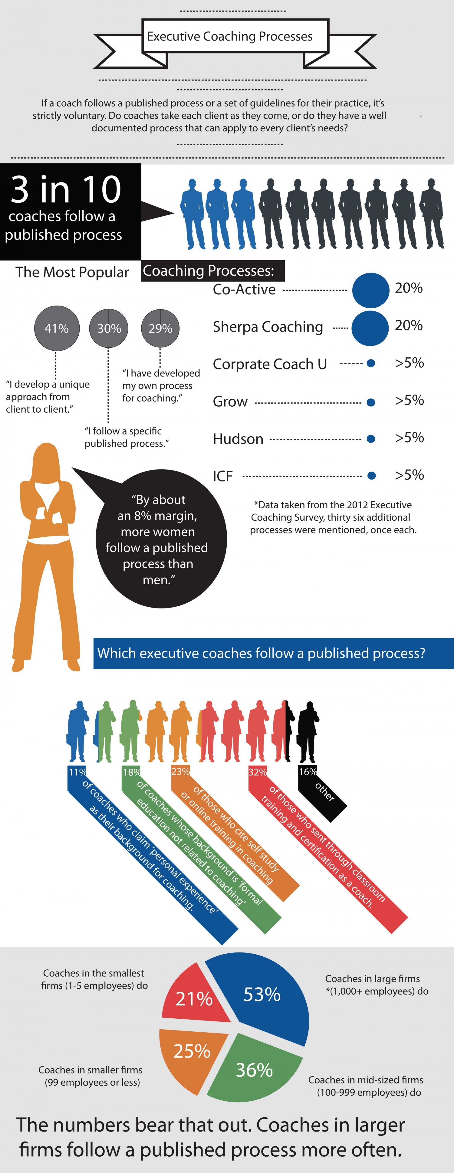 Executive Coaching Processes Infographic