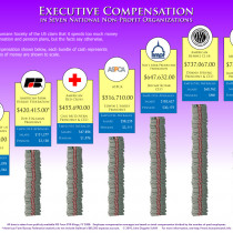 Executive Compensation in Seven National Non-Profit Organizations Infographic