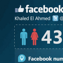 Facebook Arab Users May 2012 Infographic