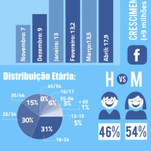 Facebook conquers Brazil Infographic