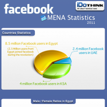 Facebook MENA Stats Infographic