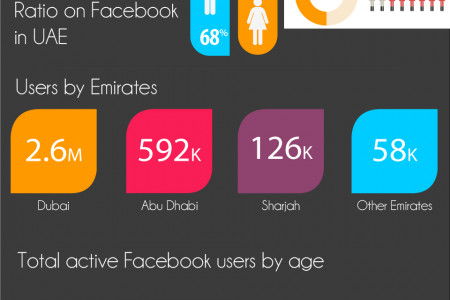 Facebook Stats  - United Arab Emirates (UAE) Infographic
