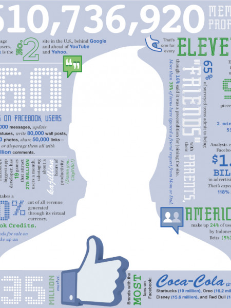 Facebook Stats Mash-up Infographic