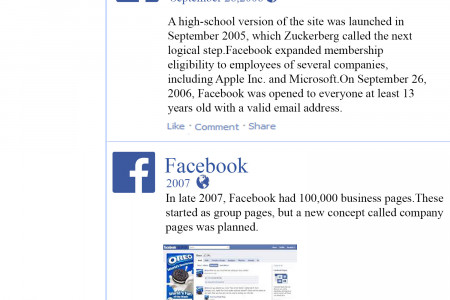 Facebook success story Infographic