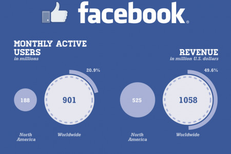 Facebook's untapped potential Infographic