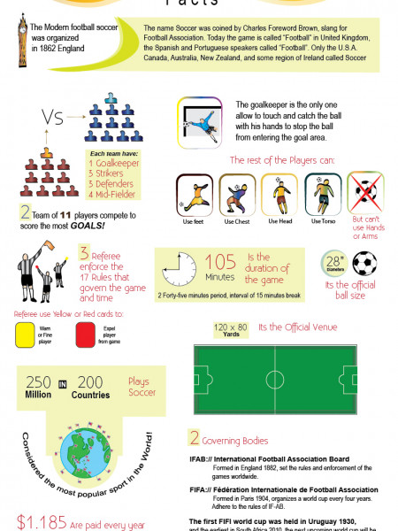 Football Soccer Facts Infographic