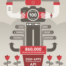 Facts About Instagram Infographic