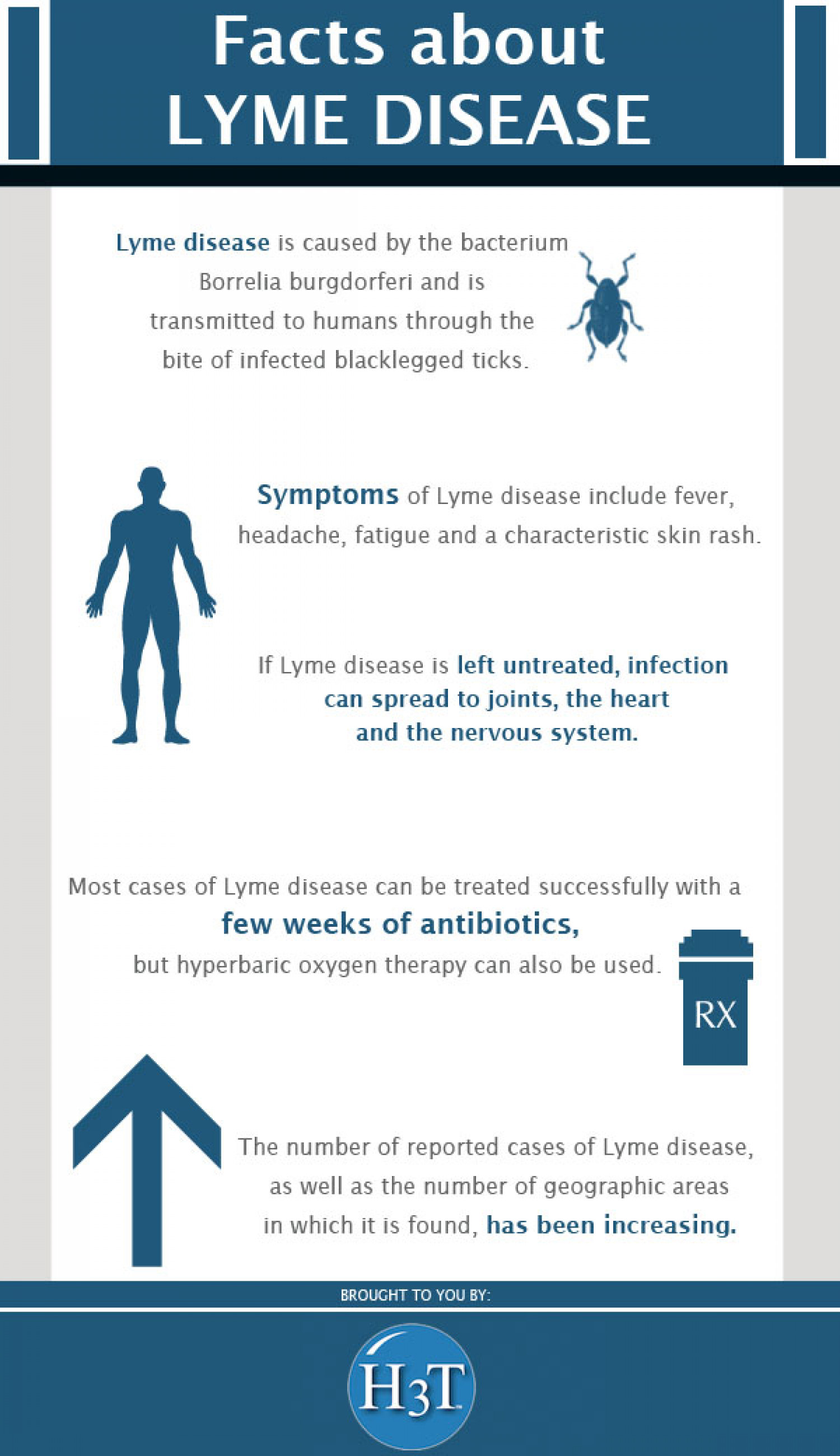 Facts About Lyme Disease Infographic