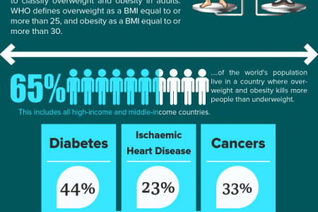 Facts About Obesity Infographic