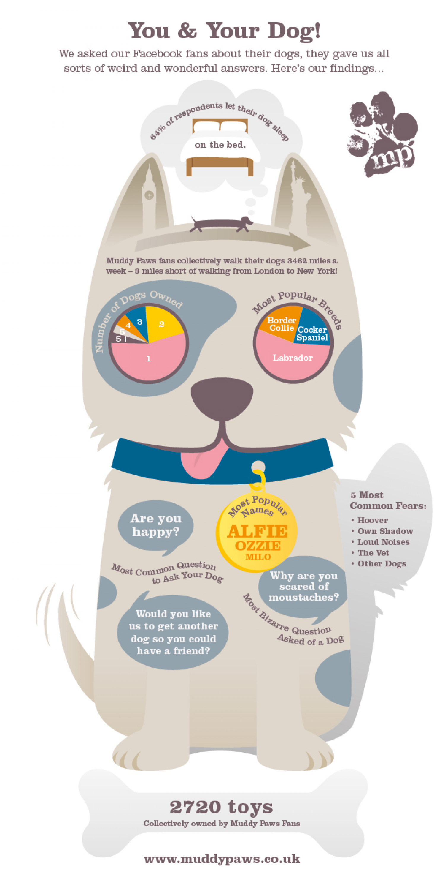 Facts about your dog Infographic