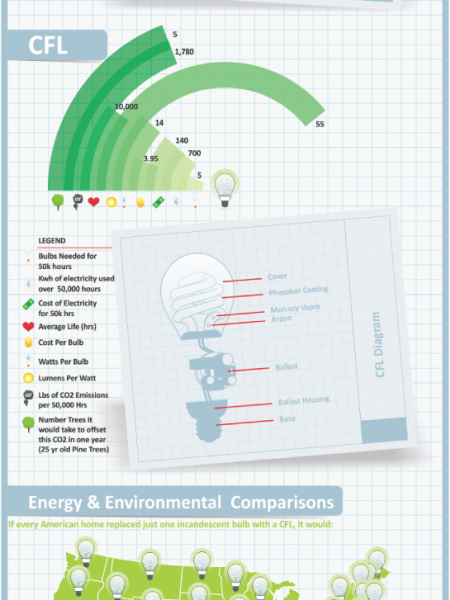 Facts of Light Bulbs Infographic