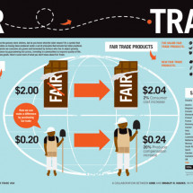 Fair Trade  Infographic