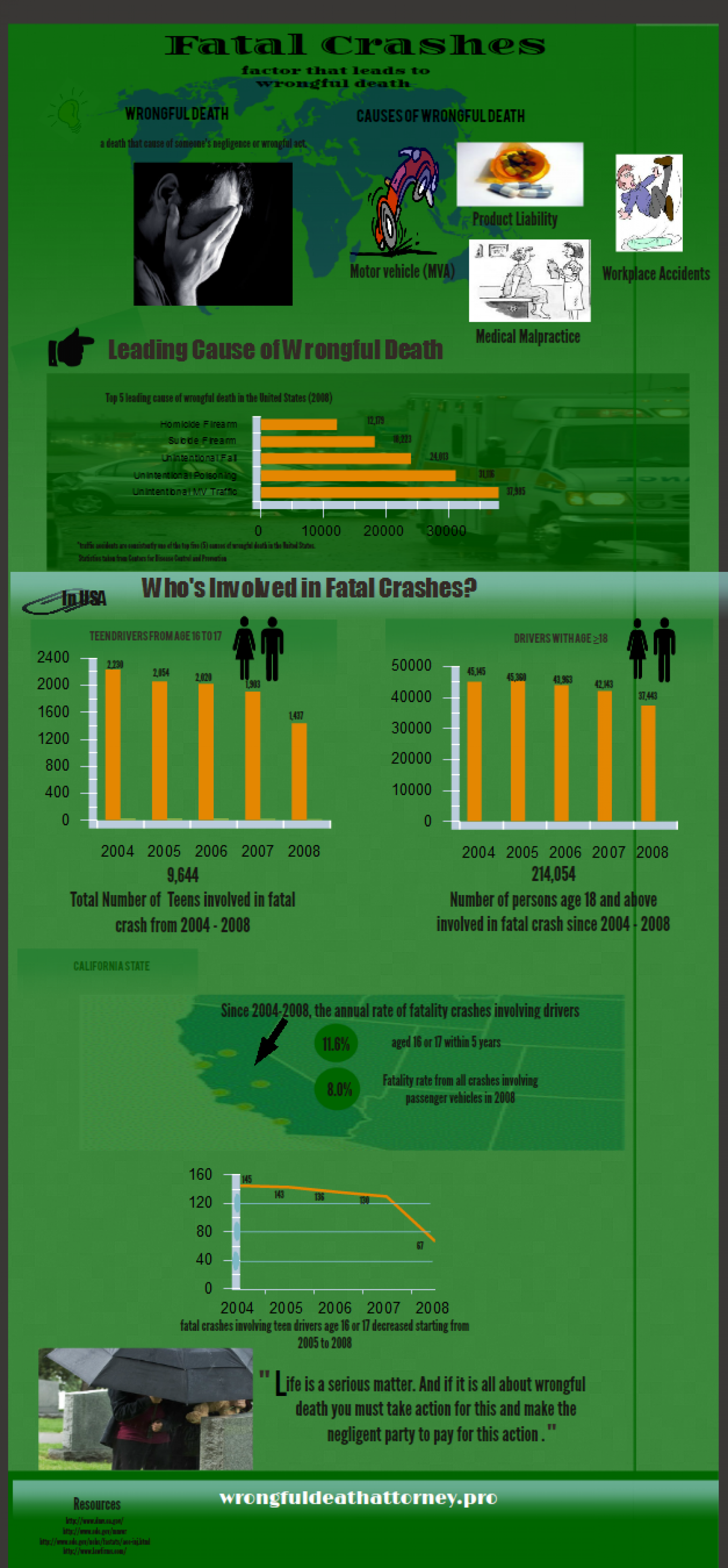 Fatal Crashes - Leading Cause of Wrongful Death Infographic