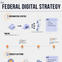 Federal Digital Strategy Infographic