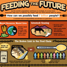 Feeding the Future Infographic
