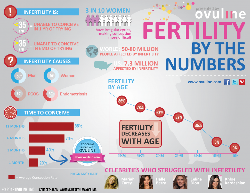Fertility by the Numbers Infographic