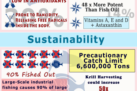 Fish Oil vs Krill Oil Infographic