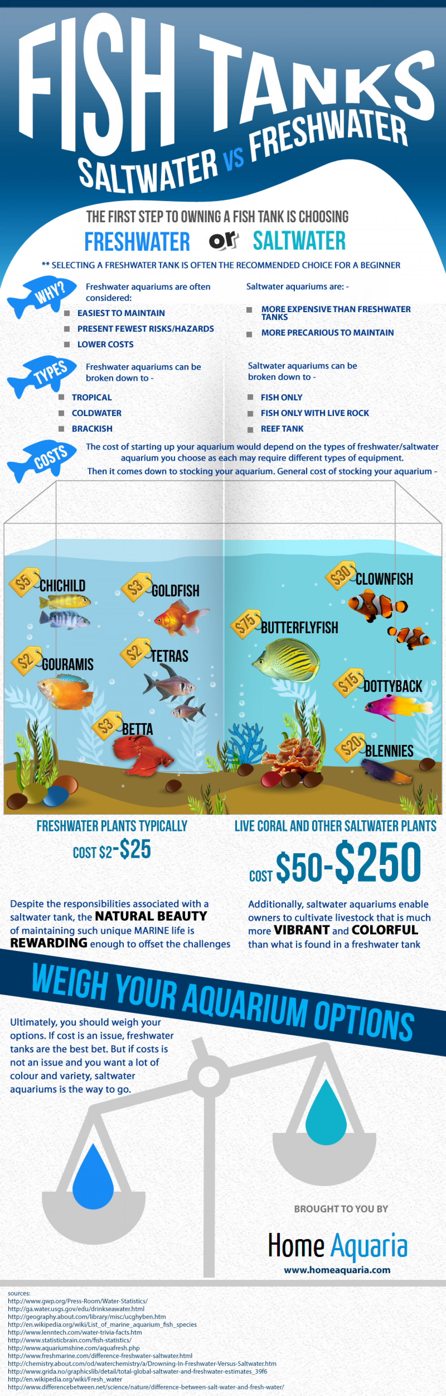 Saltwater fish vs freshwater fish freshwater vs for Spring water for fish tank