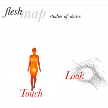 Fleshmap: Studies of Desire Infographic