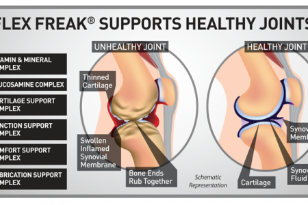Flex Freak - Science of Healthy Joints Infographic