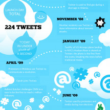 Following Twitter Infographic
