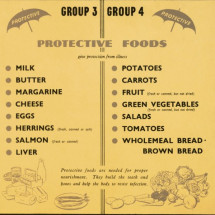 Food Groups Infographic