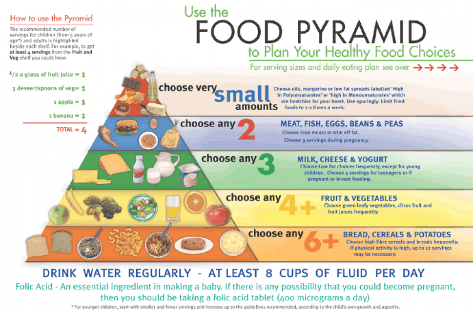 Food Pyramid Infographic Infographic