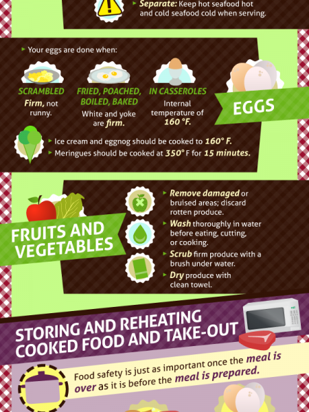 Food Safety Good Food Gone Bad  Infographic