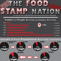Food Stamp Nation Infographic