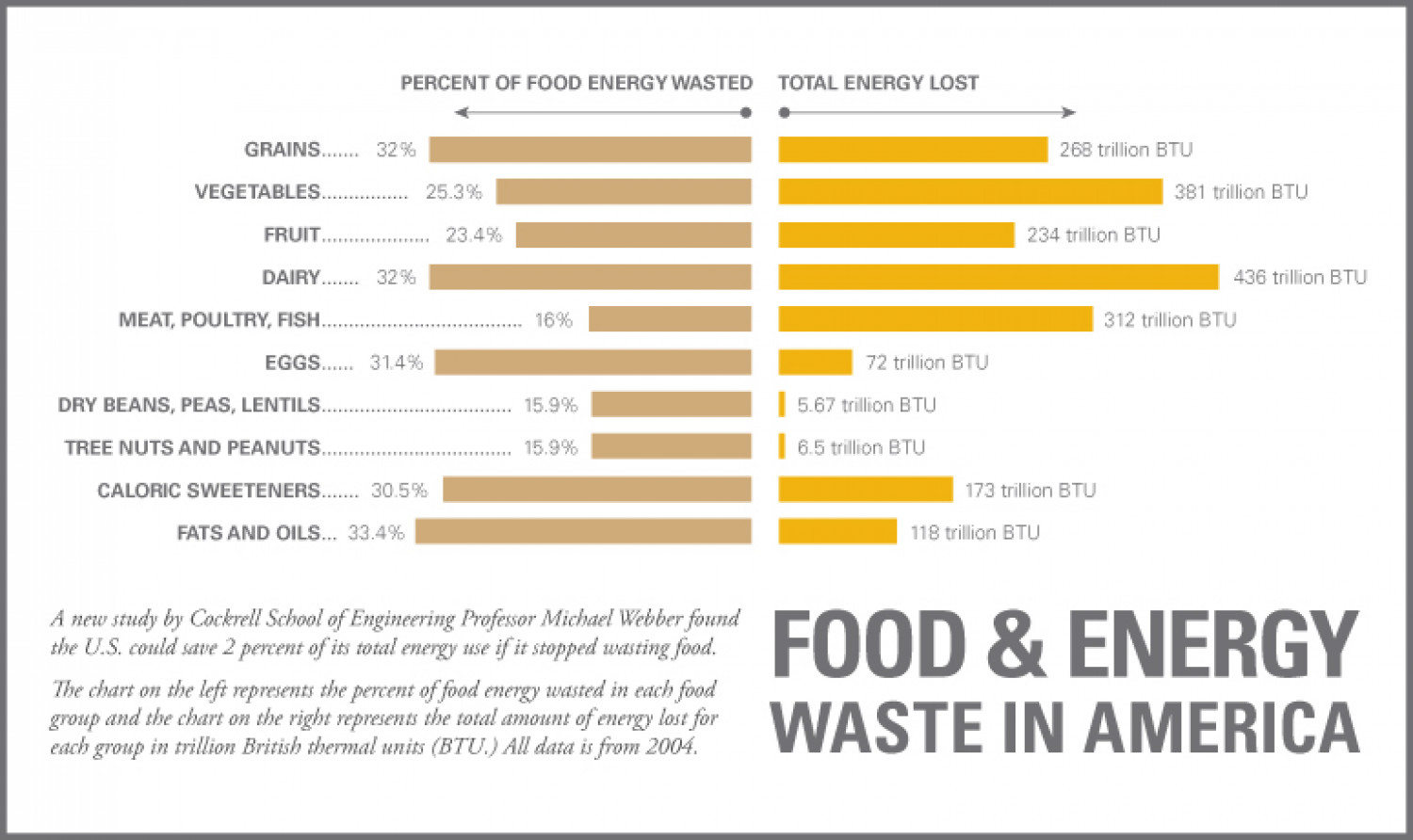 Food & Energy Waste In America Infographic