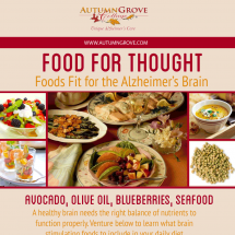 Foods Fit for the Brain Infographic
