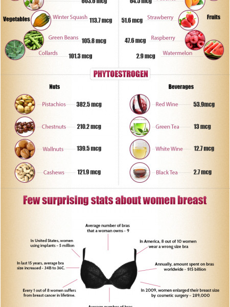 Foods that Increase Breast Size Infographic