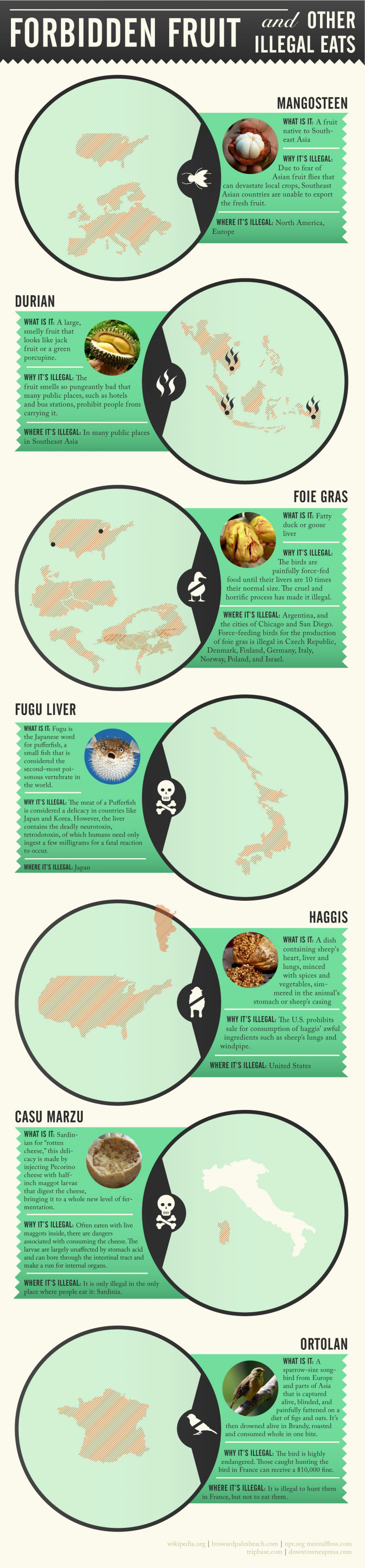 FORBIDDEN FRUIT and OTHER ILLEGAL EATS Infographic
